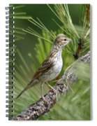 Young Lark Sparrow 1 Spiral Notebook