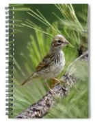 Young Lark Sparrow 2 Spiral Notebook