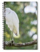 Young Little Blue Heron Spiral Notebook