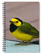 Young Male Hooded Warbler 6 Spiral Notebook
