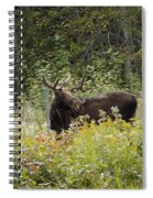 Young Male Moose Spiral Notebook