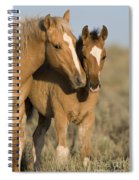 Young Mustangs Playing Spiral Notebook