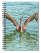 Young Pelican 0087 Spiral Notebook
