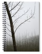 Young Ploplars Spiral Notebook