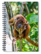 Young Red Howler Monkey Spiral Notebook