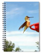 Young Rufous Spiral Notebook
