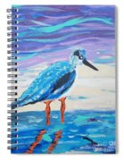 Young Seagull Coastal Abstract Spiral Notebook