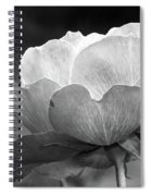 Your Are Beautiful Spiral Notebook