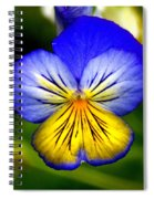 You're Invited Spiral Notebook