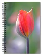 Youthful Exuberance Spiral Notebook