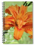 You've Only Got Three Choices Spiral Notebook