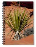 Yucca Beauty Spiral Notebook