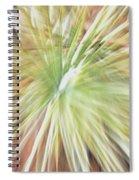 Yucca Burst Spiral Notebook