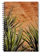 Yucca Family Spiral Notebook