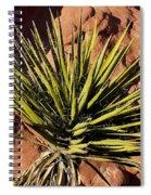 Yucca Five Spiral Notebook