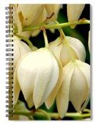 Yucca Flower Spiral Notebook