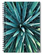 Yucca Plant Detail Spiral Notebook