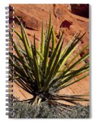 Yucca Two Spiral Notebook