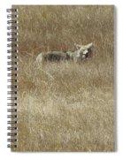 Yummy -got Me A Rat Spiral Notebook