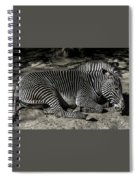 Zebra 2 Spiral Notebook