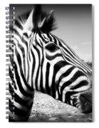 Zebra 2 Spiral Notebook