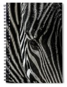 Zebra 3 Spiral Notebook