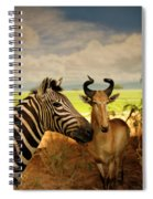 Zebra And Antelope Spiral Notebook