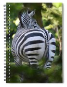 Zebra Curves And Stripes Spiral Notebook