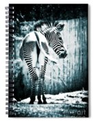 Zebra Blues  Spiral Notebook