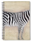 Zebra, C1620 Spiral Notebook