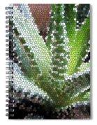 Zebra Cactus  Spiral Notebook