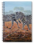 Zebra Crossing Spiral Notebook