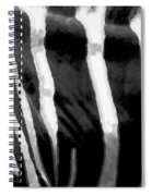 Zebra Lines Spiral Notebook
