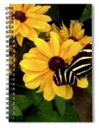 Zebra Longwing Spiral Notebook