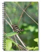 Zebra Longwing Butterfly About To Take Flight Spiral Notebook