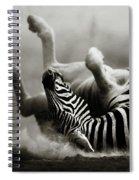 Zebra Rolling Spiral Notebook