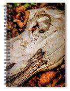 Zebra Skull Spiral Notebook