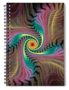 Zebra Spiral Affect Spiral Notebook