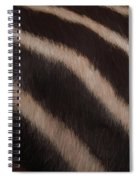 Zebra Stripes Spiral Notebook