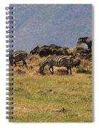 Zebras In The Ngorongoro Crater, Tanzania Spiral Notebook