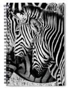 Zebras Triplets Spiral Notebook