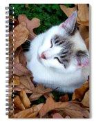 Zen Moment Spiral Notebook