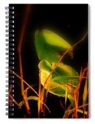 Zen Photography - Sunset Rays Spiral Notebook