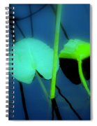 Zen Photography IIi Spiral Notebook