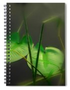 Zen Photography Iv Spiral Notebook