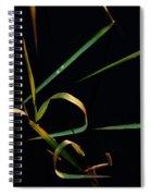 Zen Photography Spiral Notebook