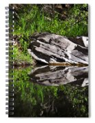 Zen Pool Spiral Notebook