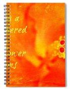 Zen Proverb 3 Spiral Notebook