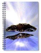 Zenith Of Radiance Spiral Notebook