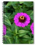 Zennia Triplet Spiral Notebook